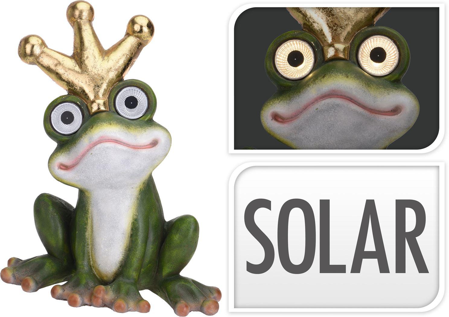 mgo kikker met solar