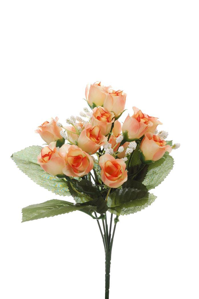 mini rose bud bush x 5 peach