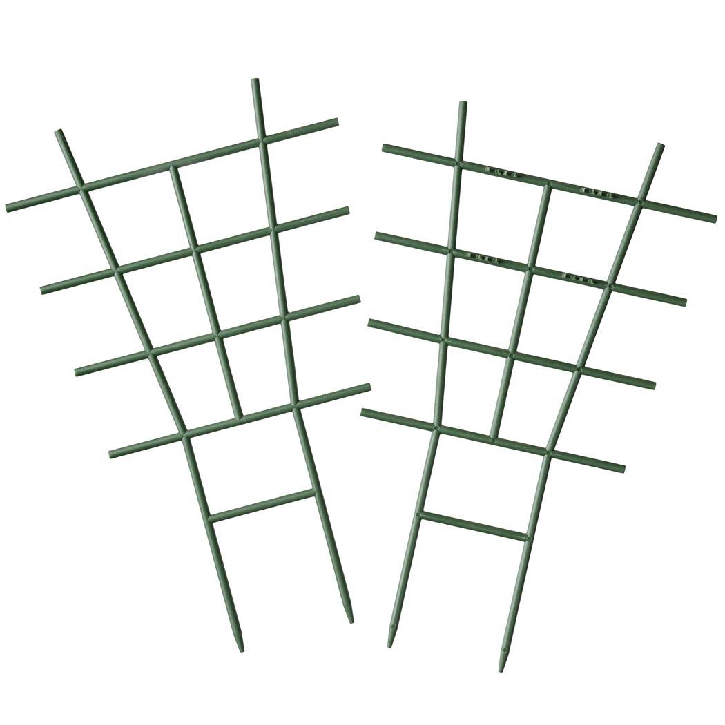 nature kamerplantenrekjes groen (2sts)