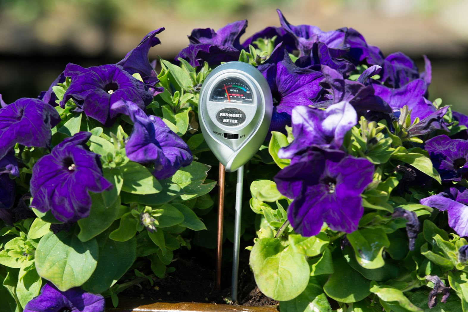 nature senso 3 - combi : ph-meter en vochtigheidsmeter