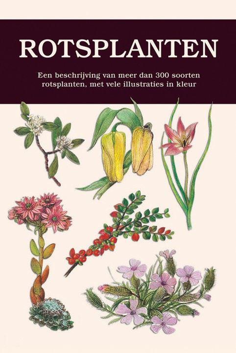natuurgids: rotsplanten