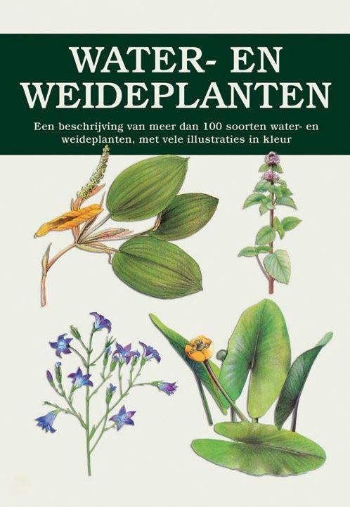 natuurgids: water- en weideplanten