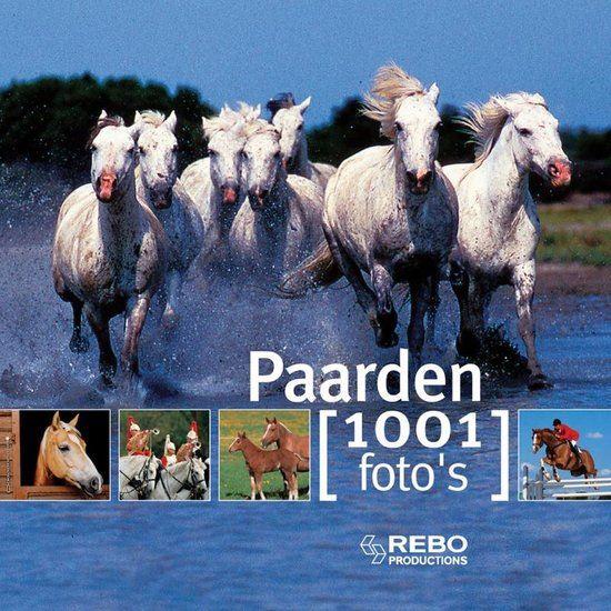 paarden - 1001 fotoboek