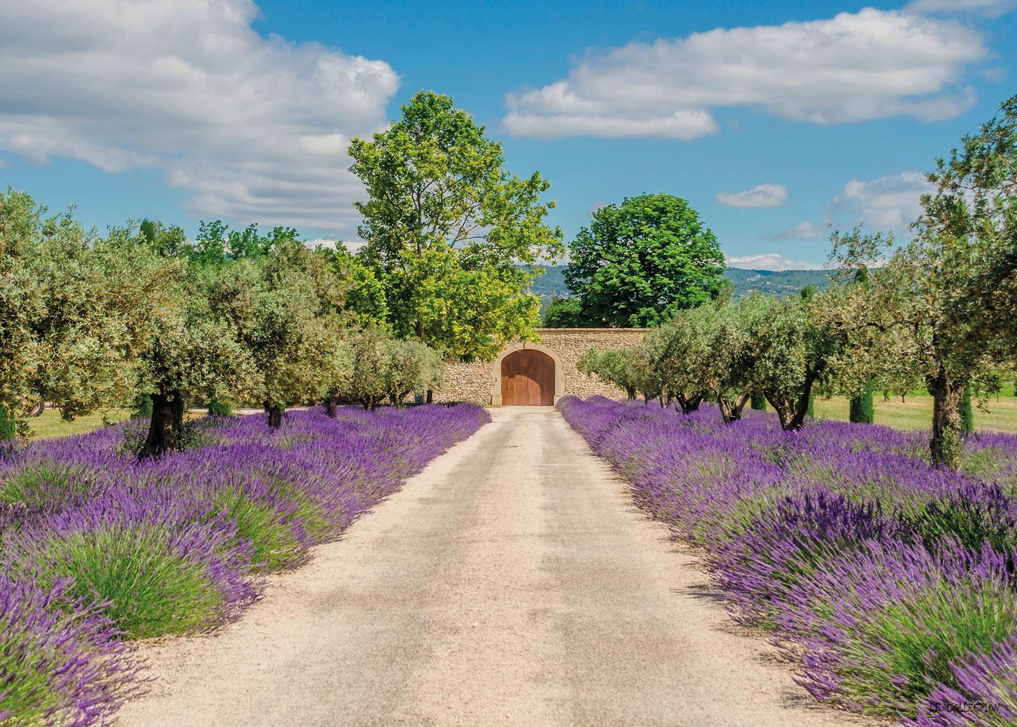 pb-collection tuinschilderij lavender view with door