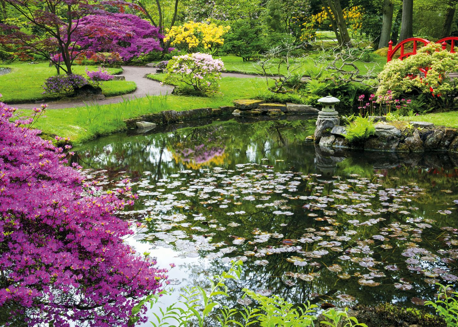 pb-collection tuinschilderij pond