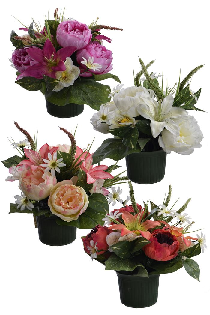 peony/lily/hydrangea in pot assorted