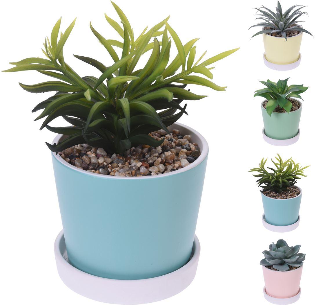 plant in keramiek pot (4 kleuren ass.)