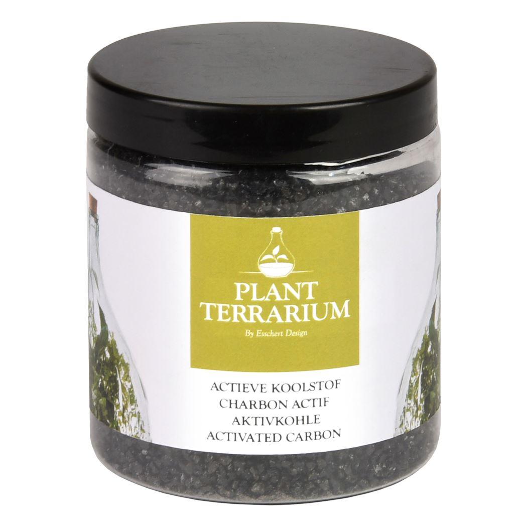 plant terrarium - plant terrarium actieve koolstof