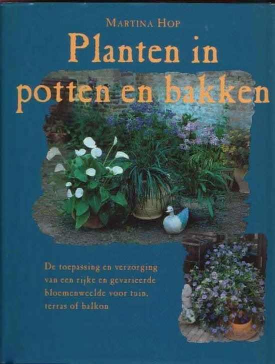 planten in potten en bakken