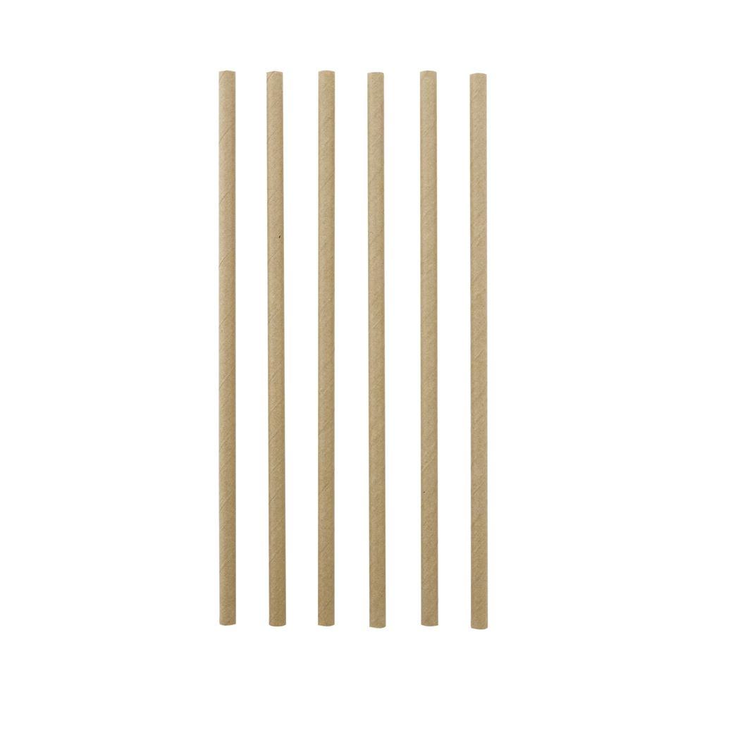 point-virgule papieren rietjes bruin (48sts)