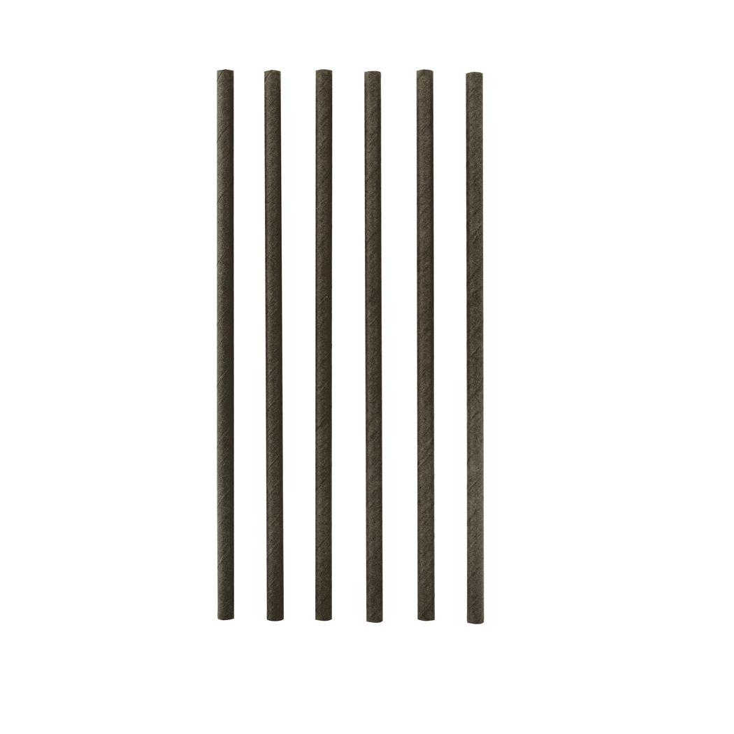 point-virgule papieren rietjes zwart (48sts)