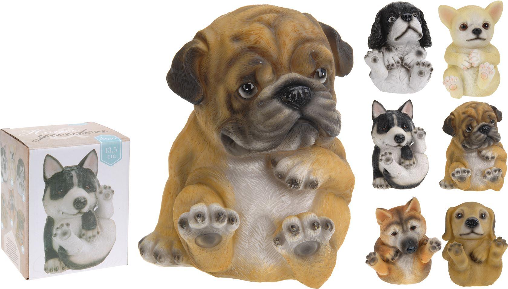 poly hond grappig (6ass.)