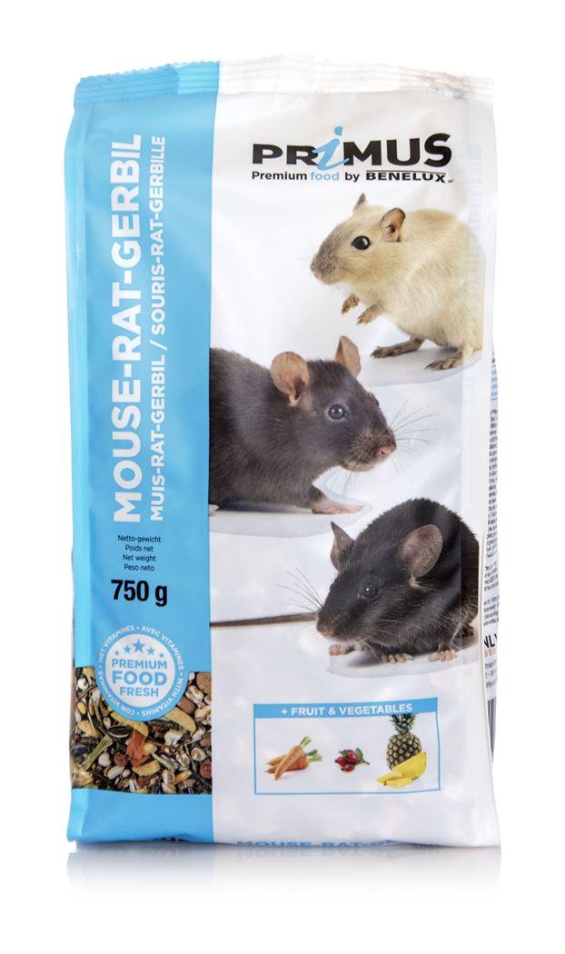primus mouse, rat, gerbil
