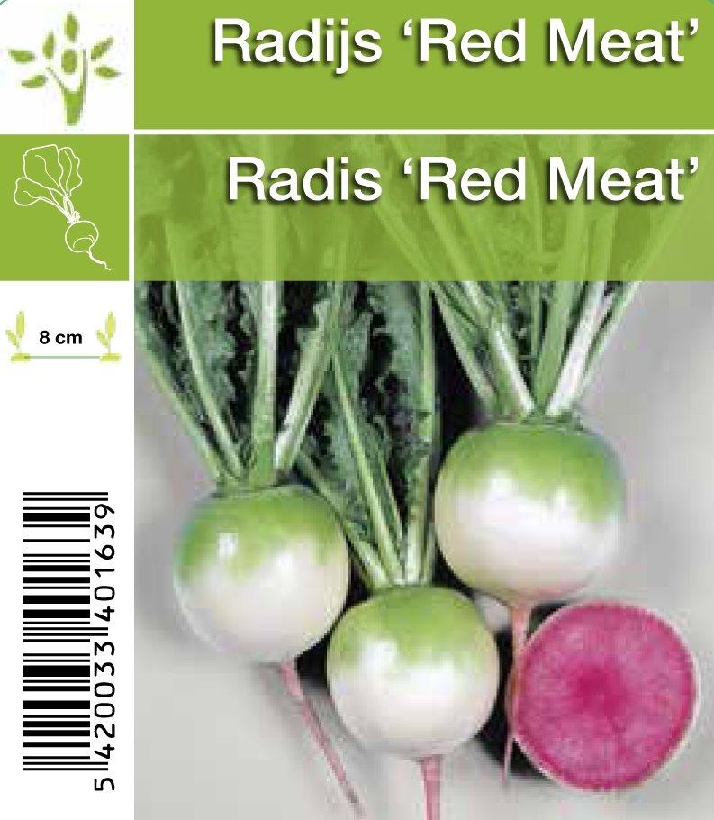 radijs 'red meat' in setje (6sts)