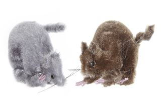 rat bruin/grijs (2ass.)