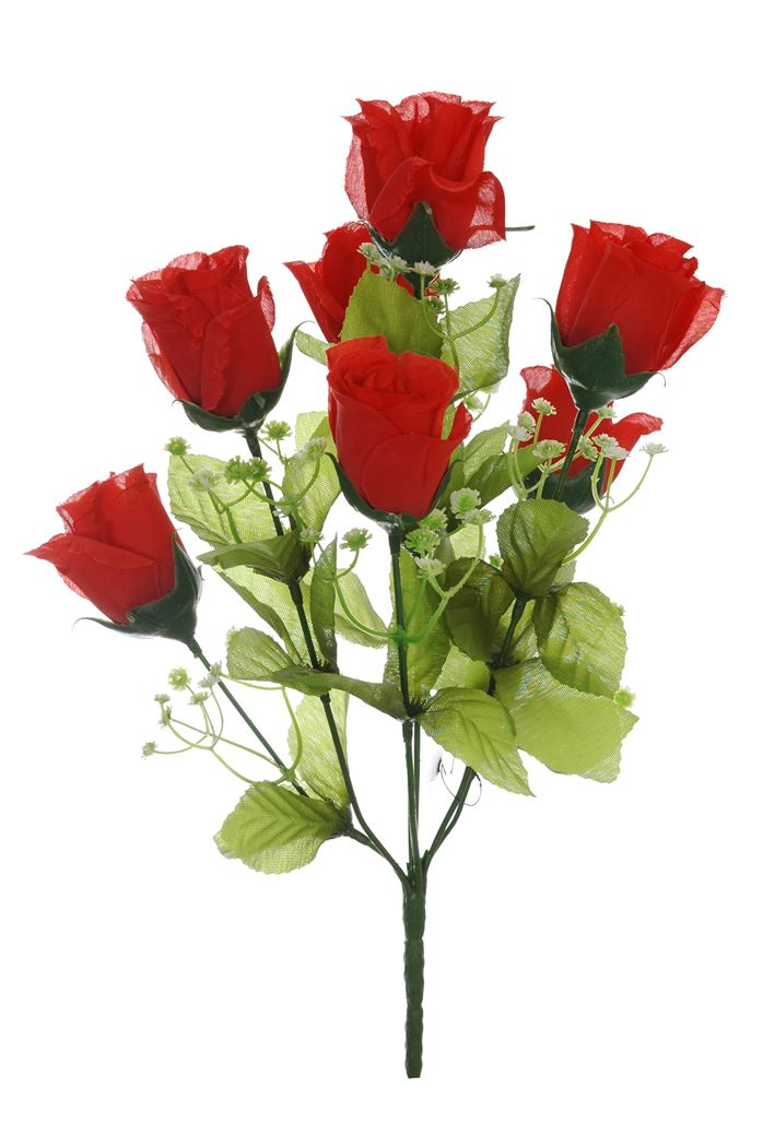 rose bud bush x 7