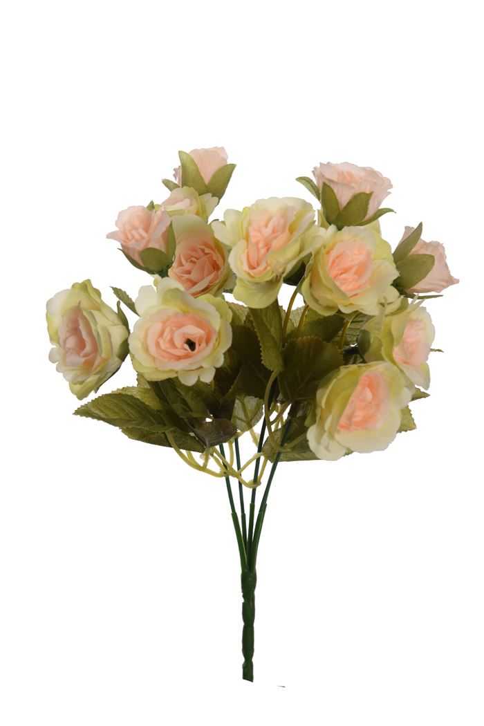 rose bush x 5 with 20 flowers green