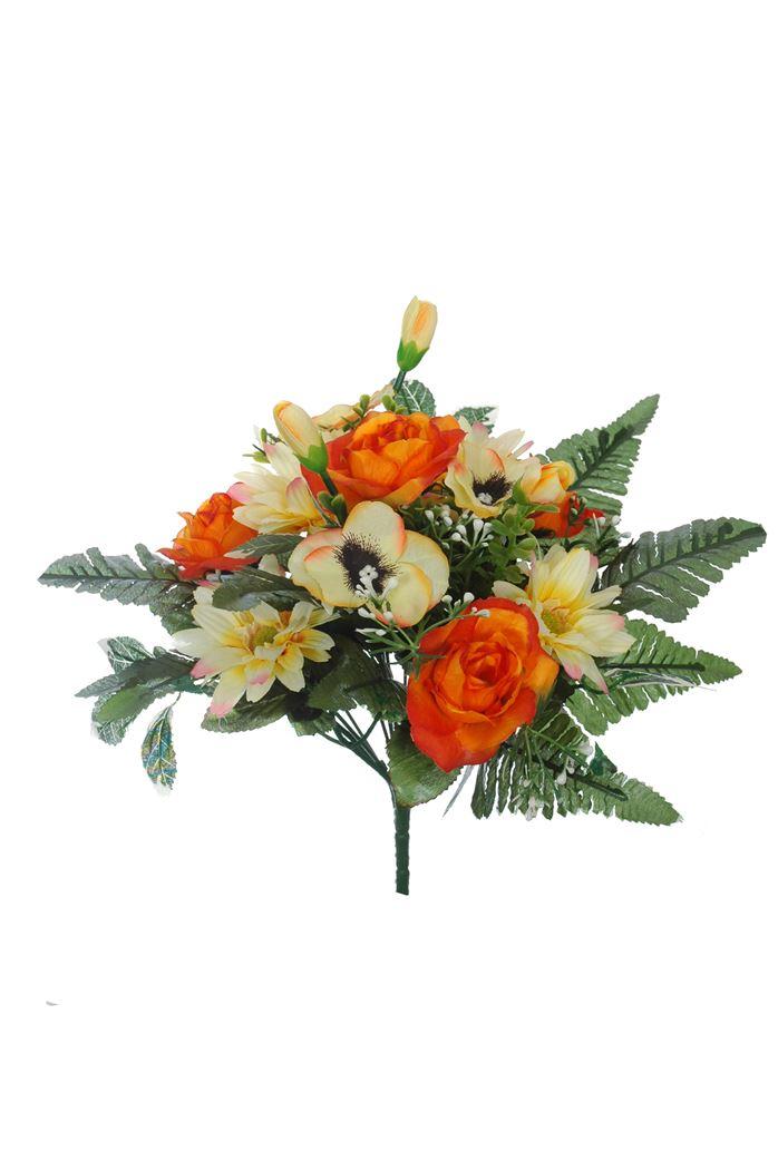 rose/daisy bush x 12 orange