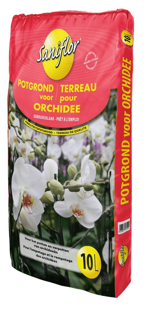 saniflor potgrond voor orchidee