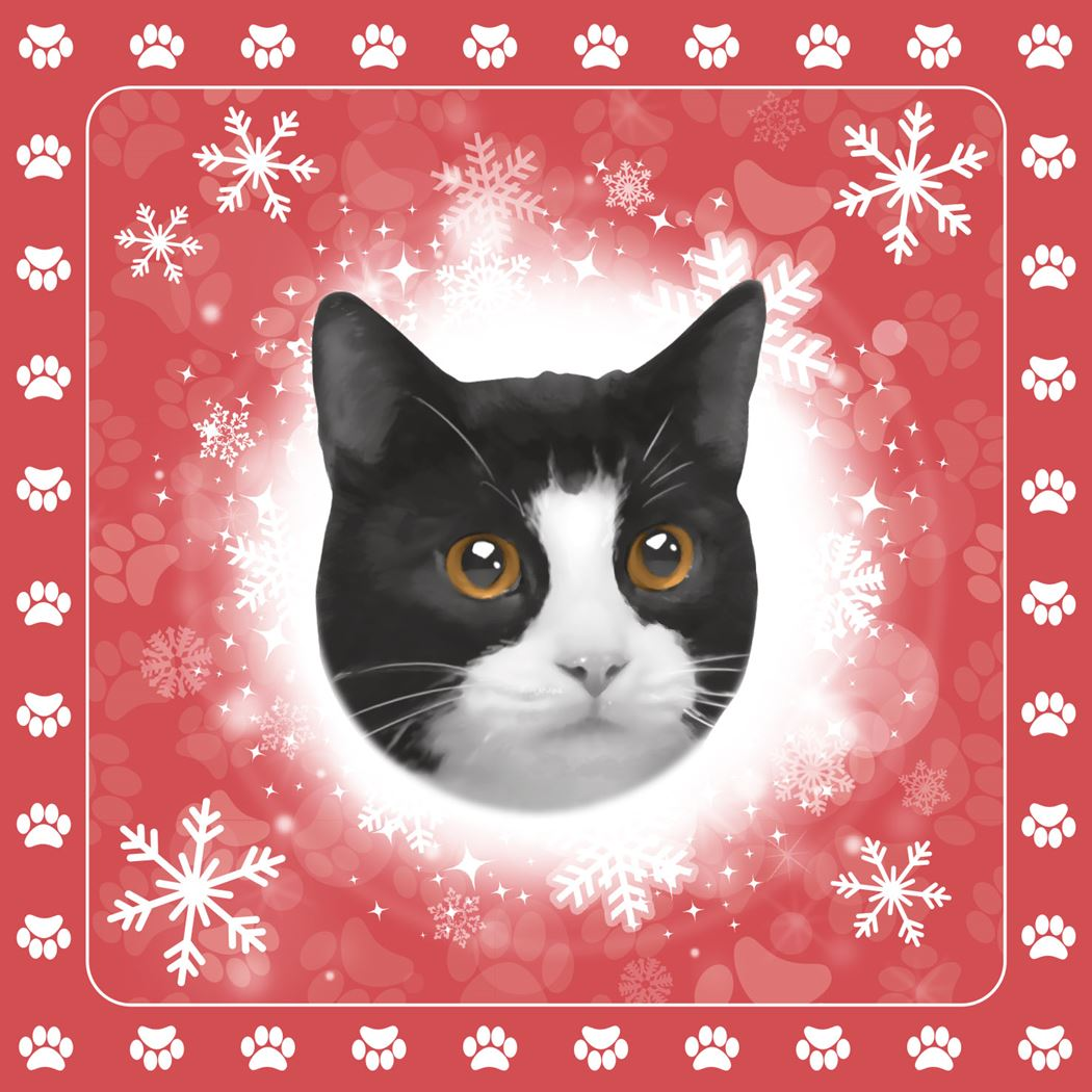 servetten kat zwart/wit (20 sts)