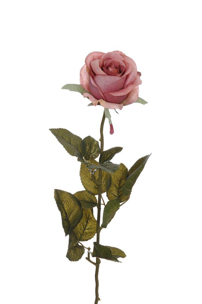 single rose bud mauve