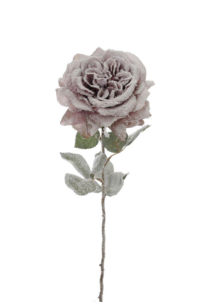 single rose w/snow mauve