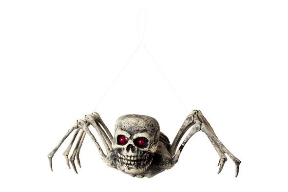 skelet spin foam