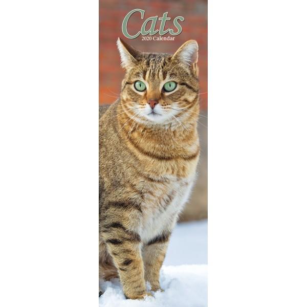 slimline kalender 2020 cats as