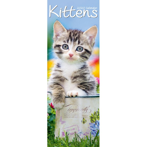 slimline kalender 2020 kittens as