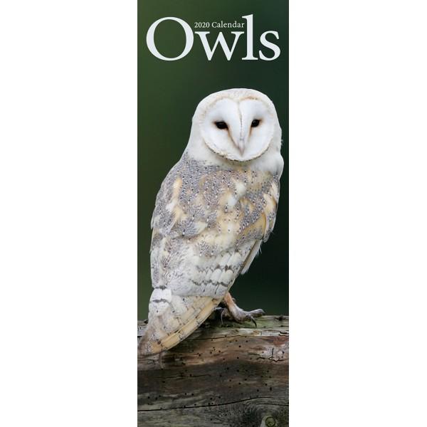 slimline kalender 2020 owls as