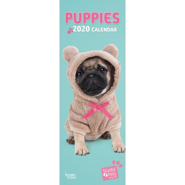 slimline kalender 2020 puppies studio pets