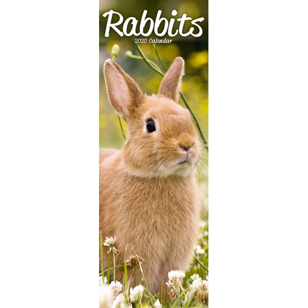 slimline kalender 2020 rabbits as