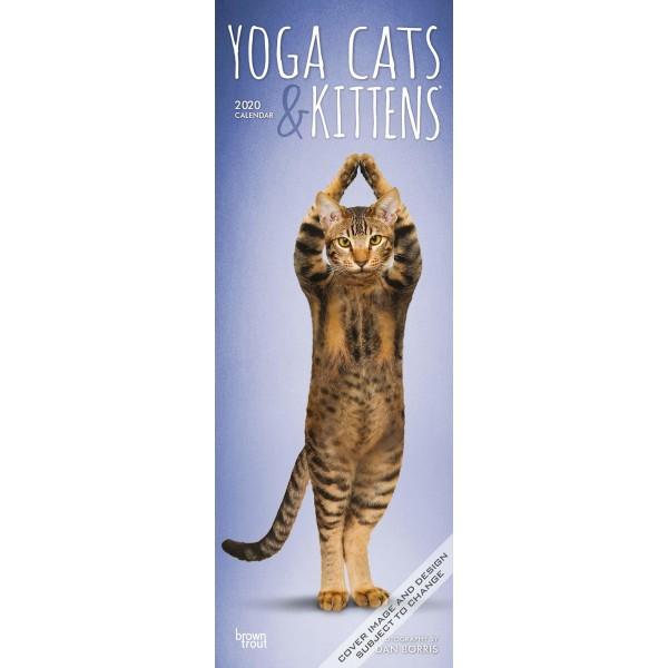 slimline kalender 2020 yoga cats & kittens btuk