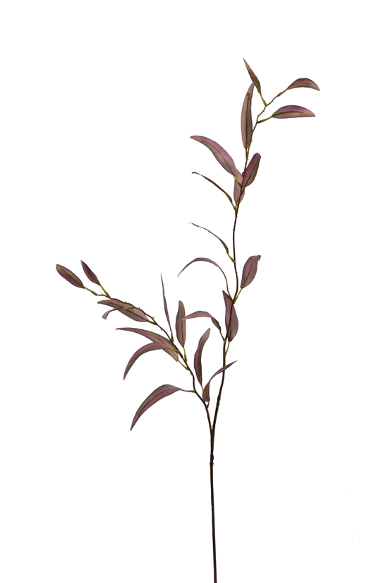 small eucalyptus spray burgundy