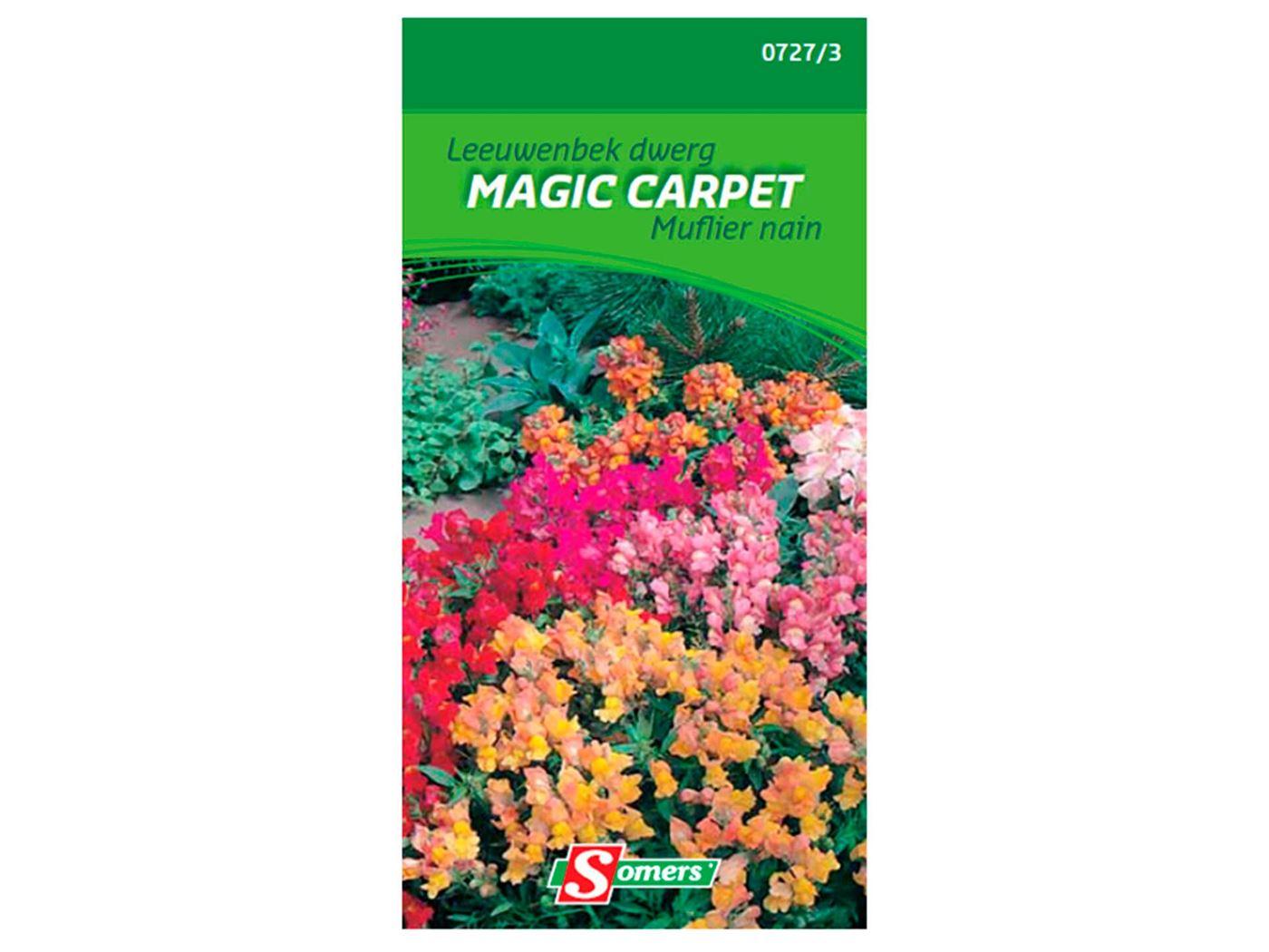somelite leeuwenbekjes magic carpet