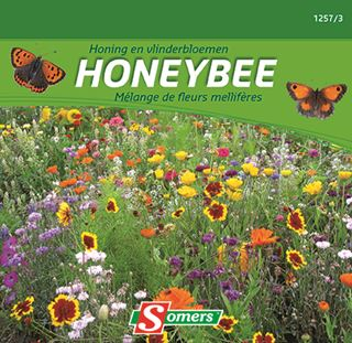 somers honing en vlinderbloemen
