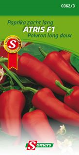 somers paprika atris f1 lange groen