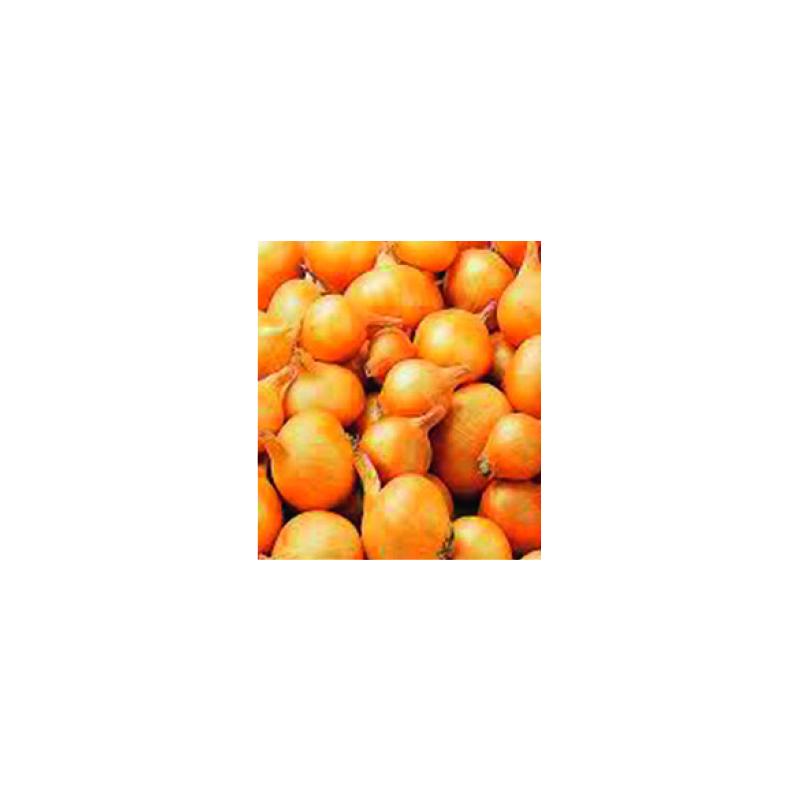somers sjalot golden gourmet 7/15