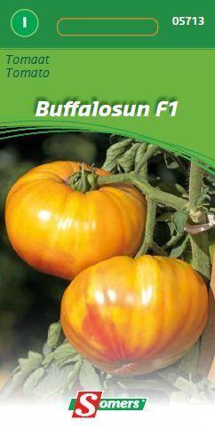 somers tomaat buffalo sun f1