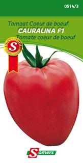 somers tomaat coeur de boeuf f1