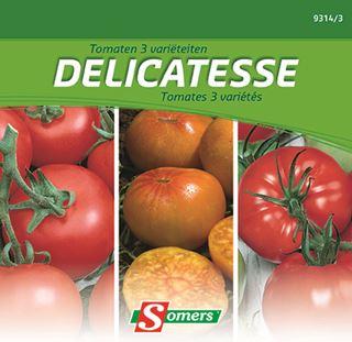 somers tomaat delicatesse 3 varietei