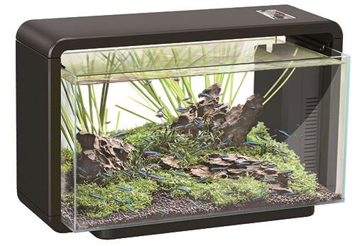 superfish aquarium home 25 zwart
