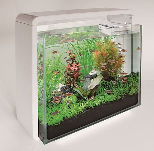 superfish aquarium home 40 wit