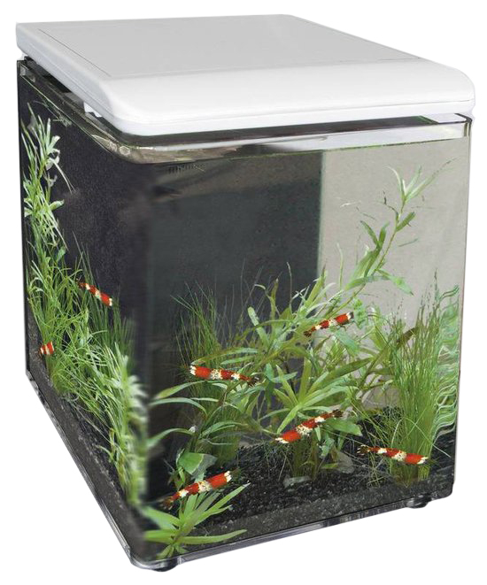 superfish aquarium home 8 wit