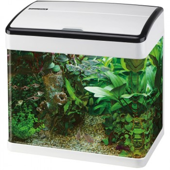 superfish aquarium panorama 35 wit
