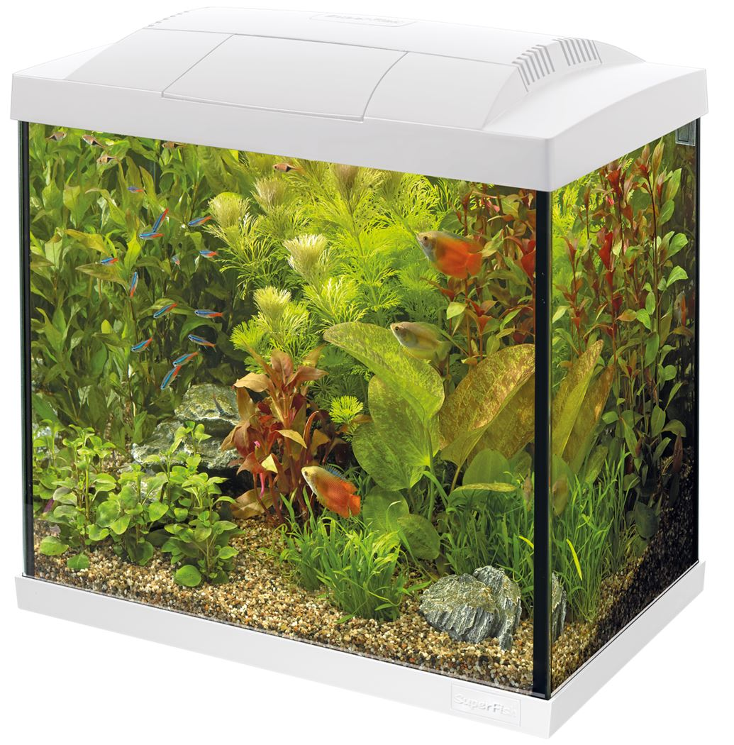 superfish aquarium start 30 led tropical kit wit