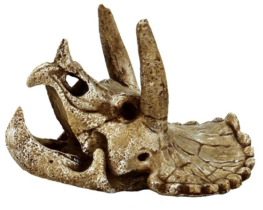 superfish skull triceratops m