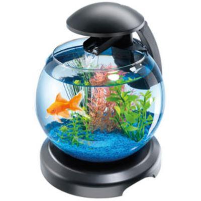 tetra aquarium cascade globe zwart