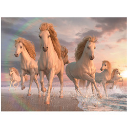 tfy livelife posters -  white horses