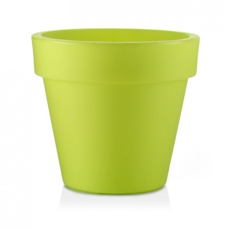 tp vaso standard one essential lime